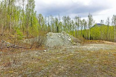 L13 WHALEN CIRCLE, Chugiak, AK 99567 - Photo 2