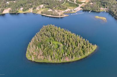 L15 ISLAND LAKE, Nikiski/North Kenai, AK 99635 - Photo 1