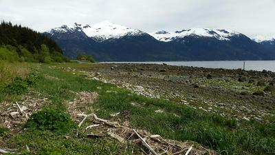 5.5 FRONT, Haines, AK 99827 - Photo 2