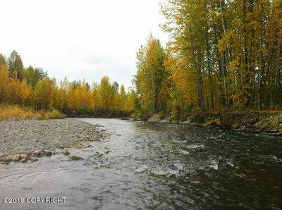 A002 E NO ROAD TRAIL, Talkeetna, AK 99676 - Photo 1