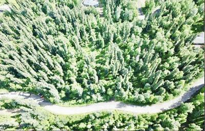 B2 L3 HEATHER DRIVE, Fairbanks, AK 99712 - Photo 1