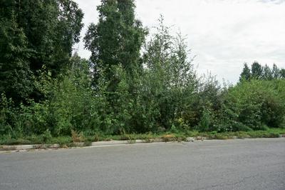 L5 B2 E 73RD AVENUE, Anchorage, AK 99507 - Photo 2