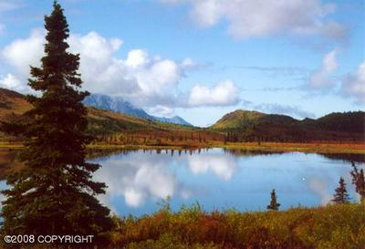 TR B001 NO ROAD RUSH LAKE, Chickaloon, AK 99674 - Photo 2