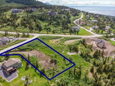 16074 MOUNTAIN AIR DR, Anchorage, AK 99516 - Photo 2