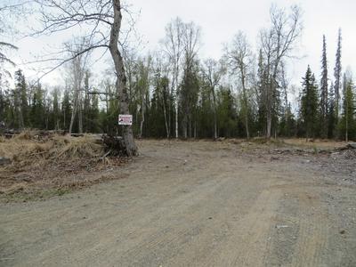 TR B PIPELINE ROAD, Nikiski/North Kenai, AK 99635 - Photo 1