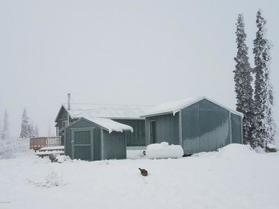 50819 S SUMMIT LOOP, Chickaloon, AK 99674 - Photo 2