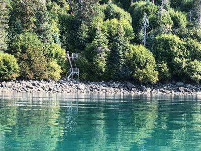 49726 HALIBUT COVE, Halibut Cove, AK 99603 - Photo 2