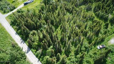 L24A B5H RABBIT CREEK VIEW & HEIGHTS, Anchorage, AK 99516 - Photo 1