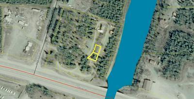 L55-56 GREAT ALASKA FISH CAMP, Sterling, AK 99672 - Photo 1