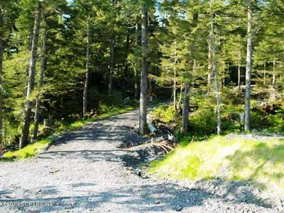 101 CABIN RIDGE ROAD, CORDOVA, AK 99574 - Photo 2