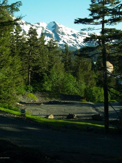 100 CABIN RIDGE ROAD, CORDOVA, AK 99574 - Photo 1