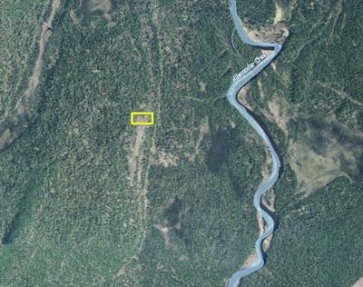 TR A1 NO ROAD, Remote, AK 99000 - Photo 2