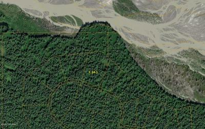 L14-1 B2 CANYON LAKE (NO ROAD), Remote, AK 99000 - Photo 1