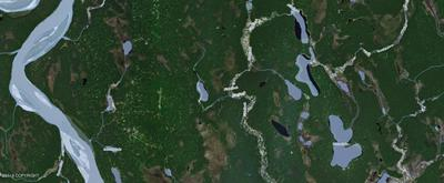 L6 NO ROAD, Remote, AK 99000 - Photo 2