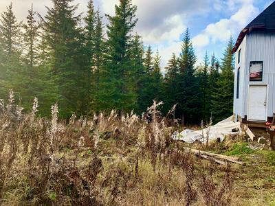 57833 BLUEBERRY GLENN CT, Homer, AK 99603 - Photo 2