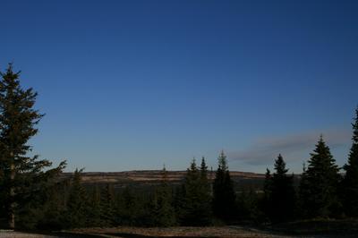 L2 MOSSBERRY, Homer, AK 99603 - Photo 2