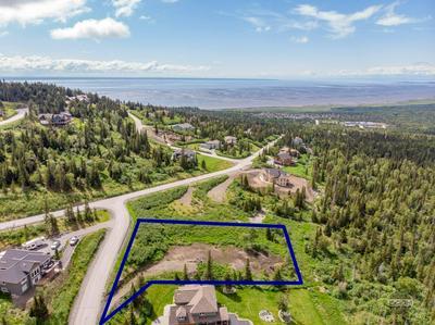 16074 MOUNTAIN AIR DR, Anchorage, AK 99516 - Photo 1