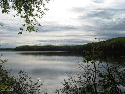 20920 W TUXEDO AVE, Willow, AK 99688 - Photo 1