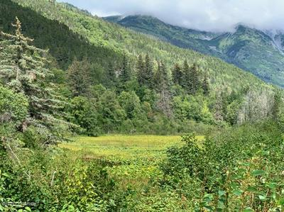 L10 HAINES HIGHWAY, Haines, AK 99827 - Photo 2