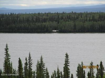 L6-7 B5 WILLOW LAKE, Copper Center, AK 99573 - Photo 2