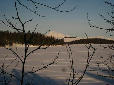 L4 NO ROAD, Willow, AK 99688 - Photo 2