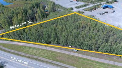 L1-2 B1 W BIG LAKE ROAD, Big Lake, AK 99652 - Photo 1