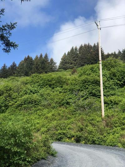 215 E HILLCREST ST, Kodiak, AK 99615 - Photo 1