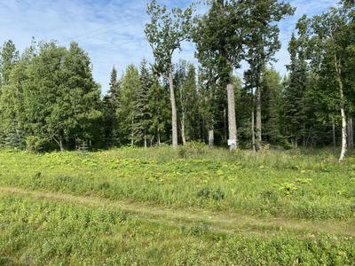 000 KENAI SPUR HIGHWAY, Nikiski/North Kenai, AK 99635 - Photo 2