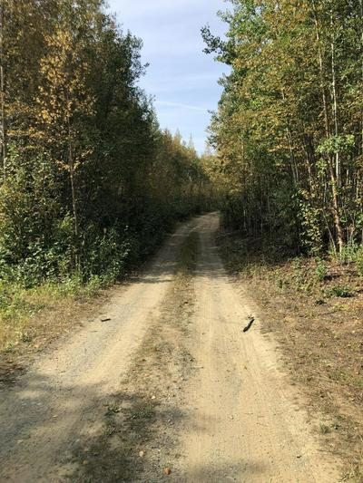 B004 NO ROAD, Big Lake, AK 99652 - Photo 2