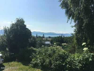 144 MOUNTAIN VIEW DR, Homer, AK 99603 - Photo 2