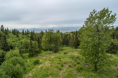 10763 STERLING HWY, Ninilchik, AK 99639 - Photo 1