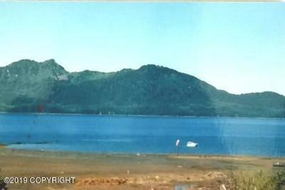 L11 B3 LATOUCHE ISLAND, Whittier, AK 99693 - Photo 1
