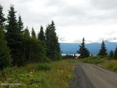 32977 FURROW ROAD, Homer, AK 99603 - Photo 1