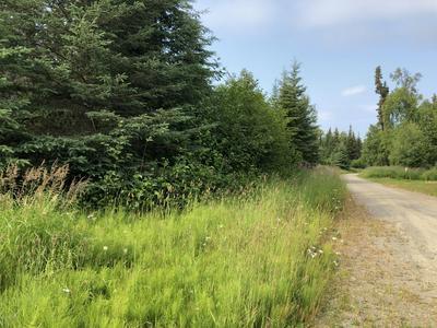 L1A TOKLAT ROAD, Kasilof, AK 99610 - Photo 2