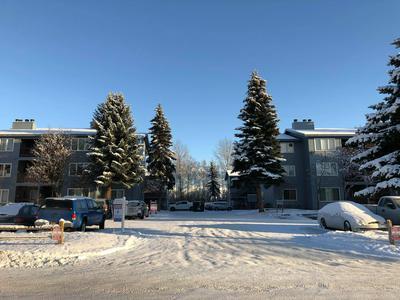8641 BLACKBERRY ST UNIT 8B, Anchorage, AK 99502 - Photo 1