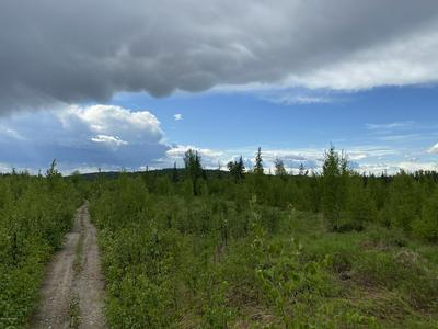 000 REMOTE, Talkeetna, AK 99676 - Photo 2