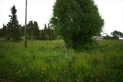 22150 BECHAROF CT, Kasilof, AK 99610 - Photo 1