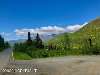L8 B4 BIRDSONG DRIVE, Eagle River, AK 99577 - Photo 1