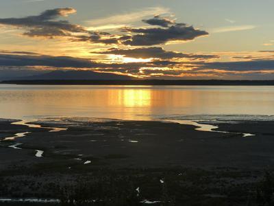333 M ST APT 403, Anchorage, AK 99501 - Photo 1