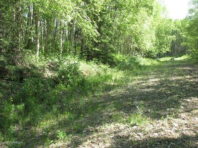 LOT 7 S NEW SANDEE CIRCLE, Big Lake, AK 99652 - Photo 2