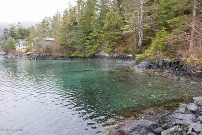 L1 QUIANA ISLAND, SITKA, AK 99835 - Photo 2