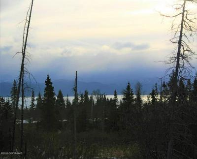 L15 TRACY AVENUE, Homer, AK 99603 - Photo 1