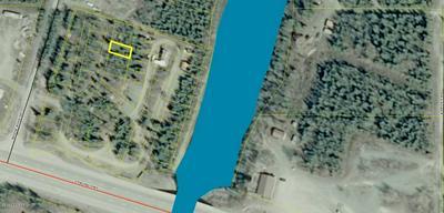 L29 GREAT ALASKA FISH CAMP, Sterling, AK 99672 - Photo 1