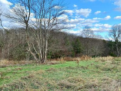 OFF OF OLD ROUTE 126, Warfordsburg, PA 17267 - Photo 1