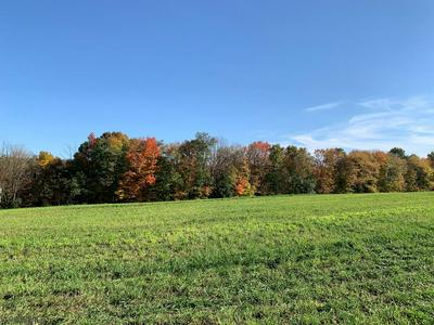 LOT 20 ROYER MOUNTAIN RD, Williamsburg, PA 16693 - Photo 1