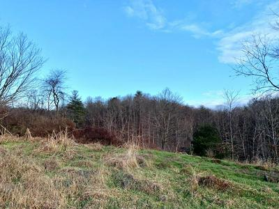 OFF OF OLD ROUTE 126, Warfordsburg, PA 17267 - Photo 2