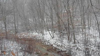 X TRUMAN BLVD, Johnstown, PA 15909 - Photo 1