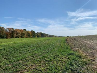 LOT 20 ROYER MOUNTAIN RD, Williamsburg, PA 16693 - Photo 2