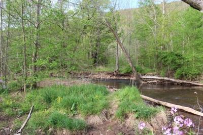 LOT 1B BURNT HOUSE ROAD, Imler, PA 16655 - Photo 2