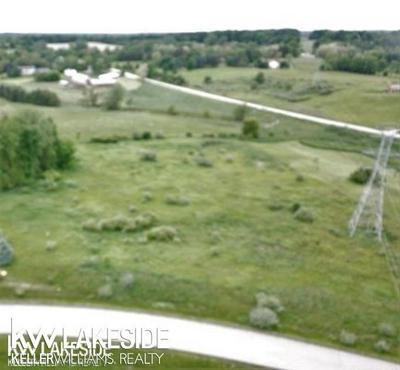 0 WHITNEY ERIN CT, Almont, MI 48003 - Photo 2